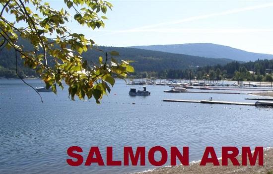 Pit Stop Loans Salmon Arm