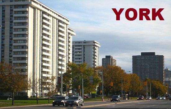 Pit Stop Loans York