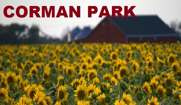 Pit Stop Loans Corman Park
